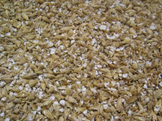 Authorities Investigate Kansas Grain Bin Collapse