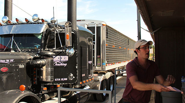 Ethan runs cards from the truck driver's to the Scoular office employee's while the trucks sit on a scale to be weighed.