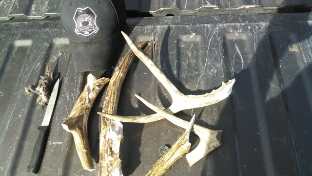 Deer poached on property used for youth hunts.