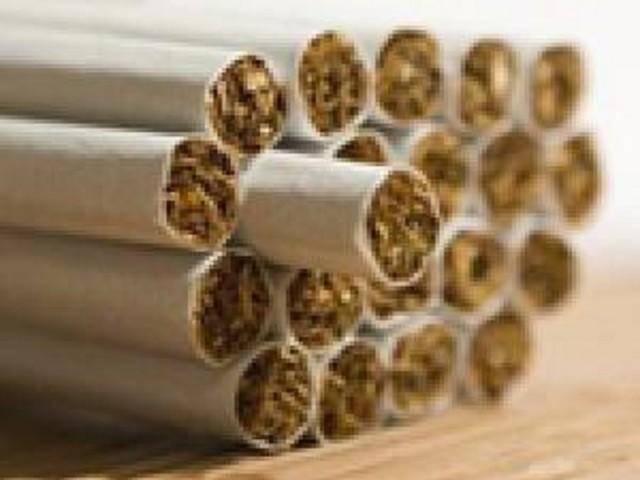 Group Pushing State Fair Smoking Ban