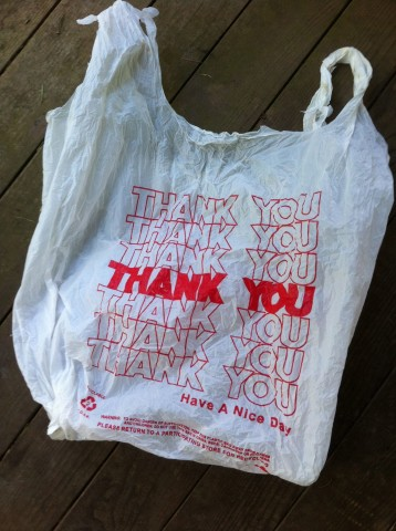 3 Groups to Push For Plastic Bag Restrictions in Lawrence