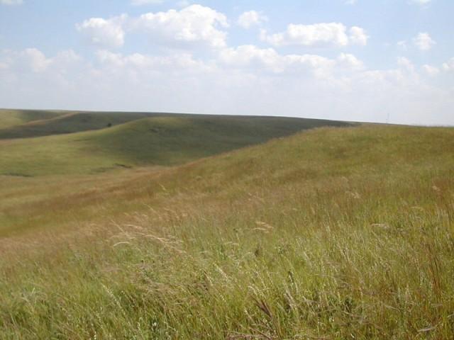 Prairie Restoration Workshops Planned