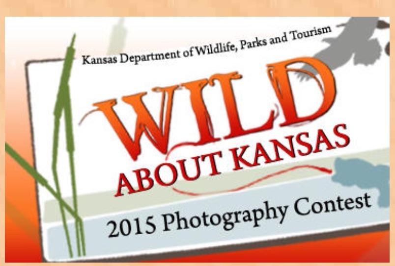 Kansas Wildlife Photos Sought