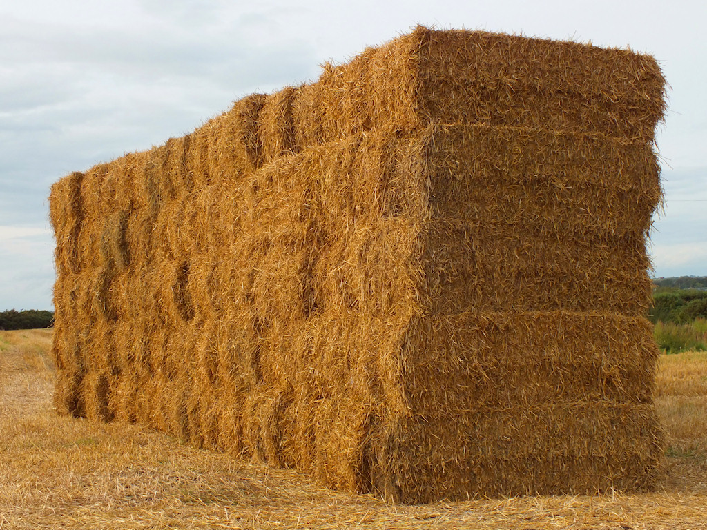 Straw Offers Second Paycheck to Growers