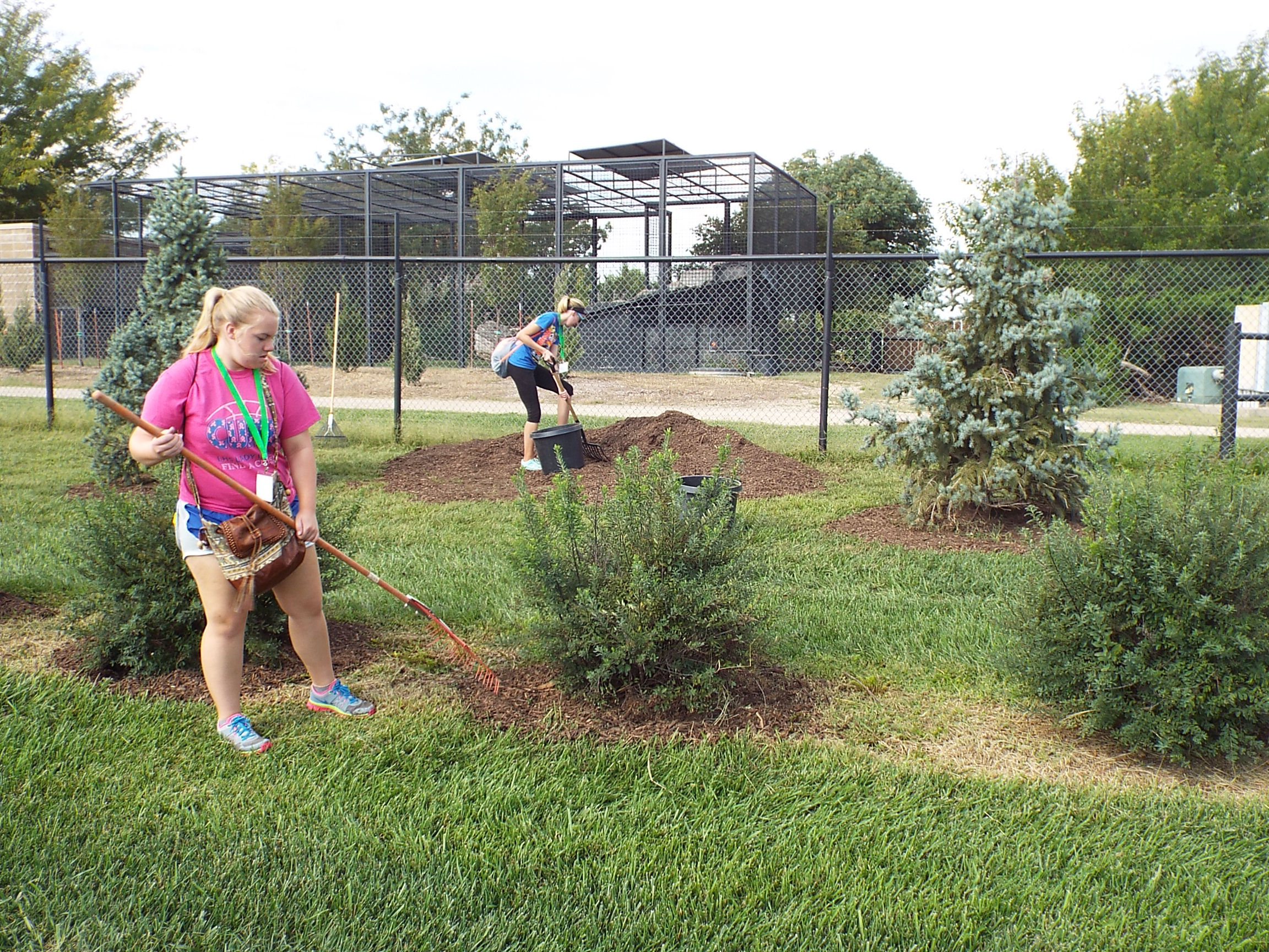 """Tigers in Service"" volunteer students helping to haul, and spread mulch."