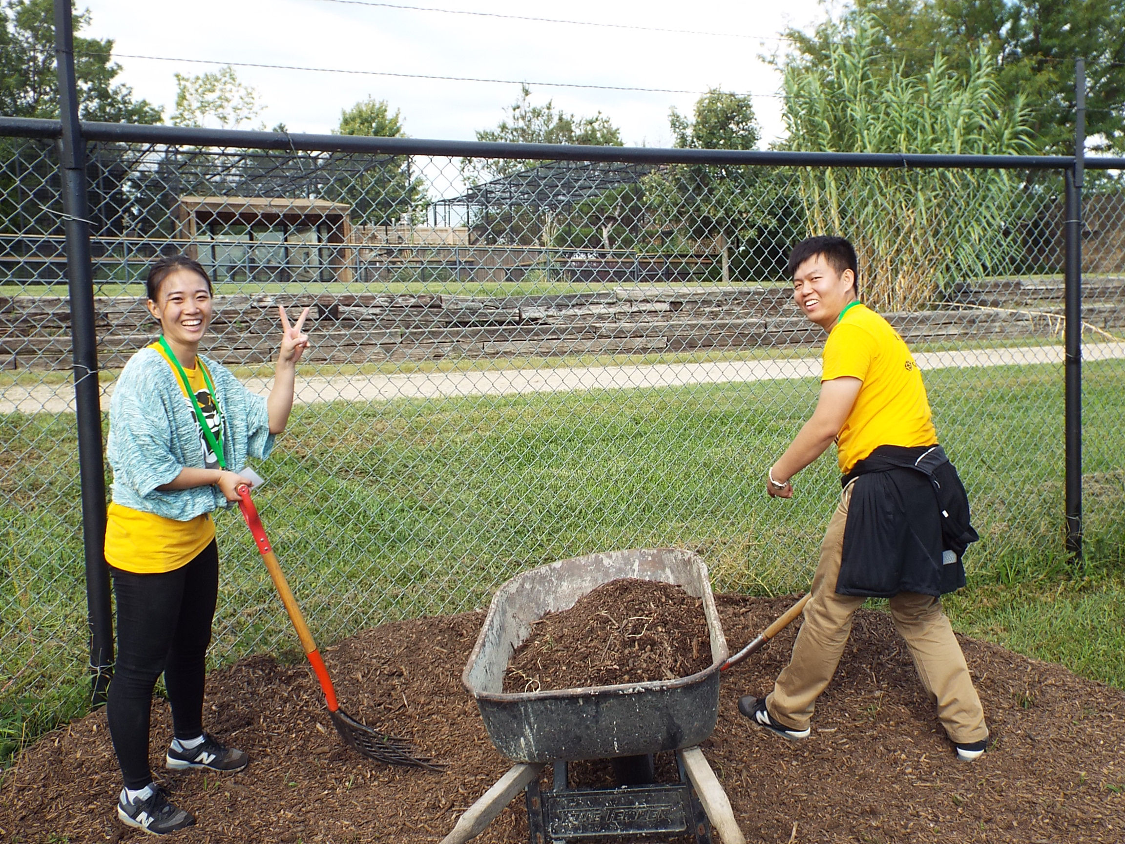 International students from China helping in the effort at Rolling Hills Zoo.
