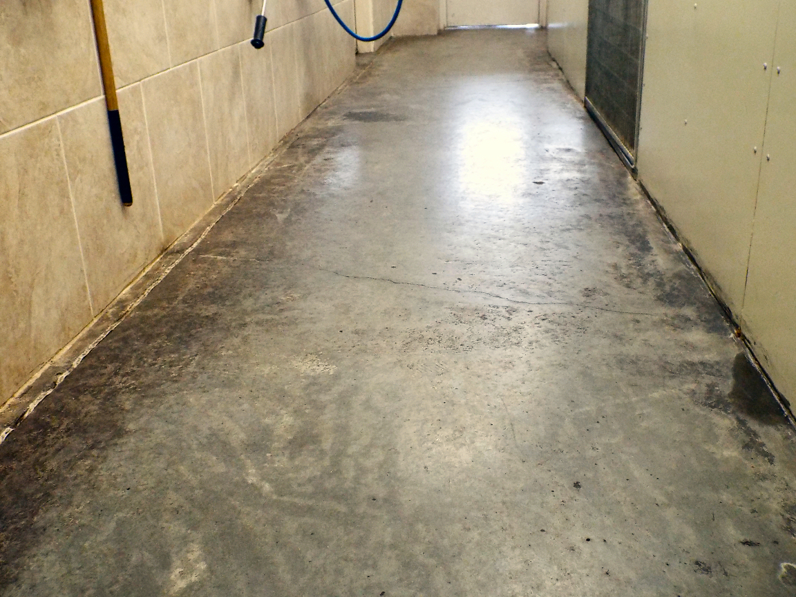 A resurfaced floor has replaced this cracked, concrete floor.