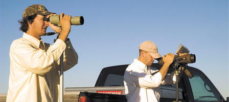 Birding Big Year Competition Begins Jan. 1