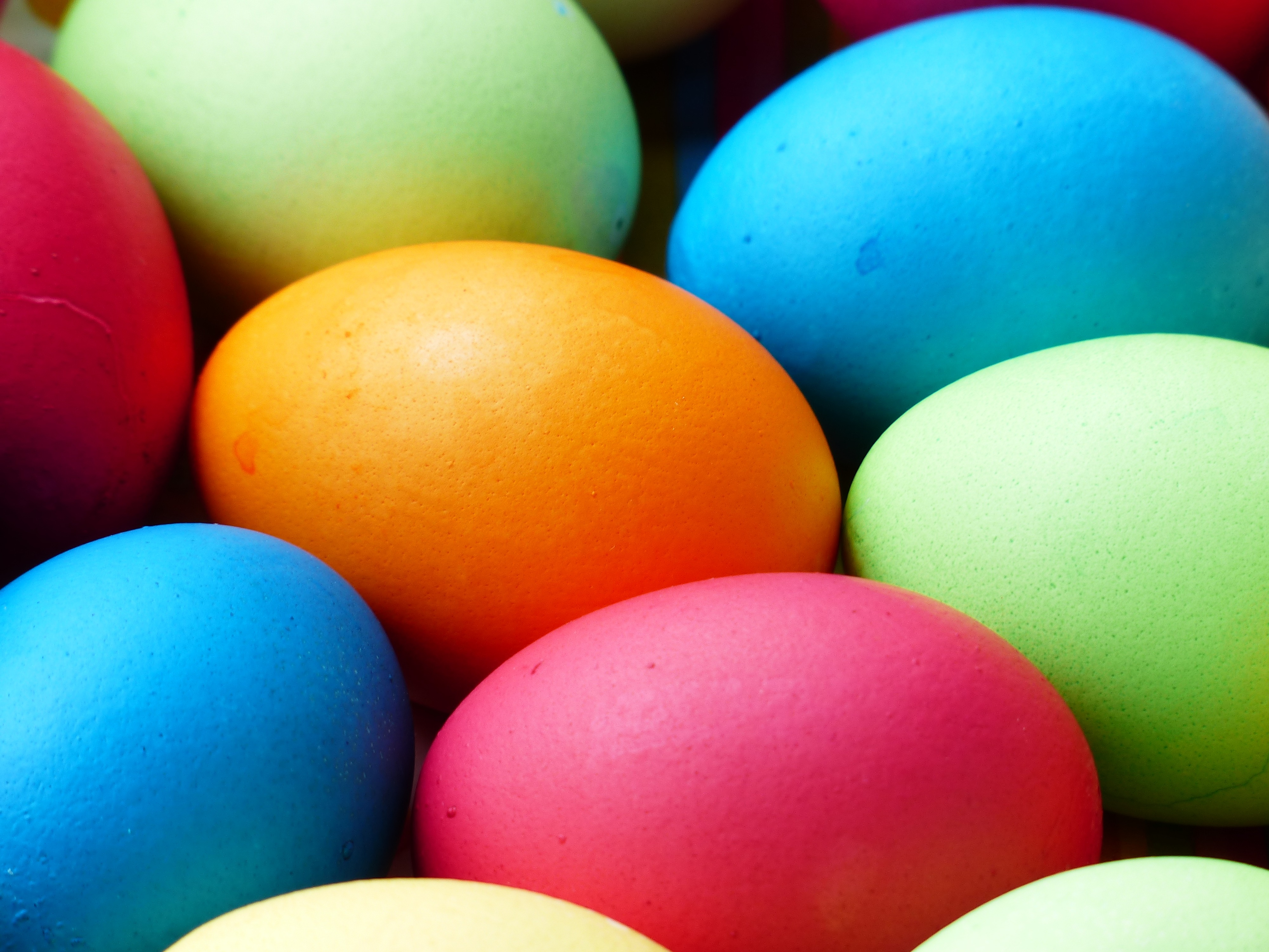 Easter Egg Hunt on April 15
