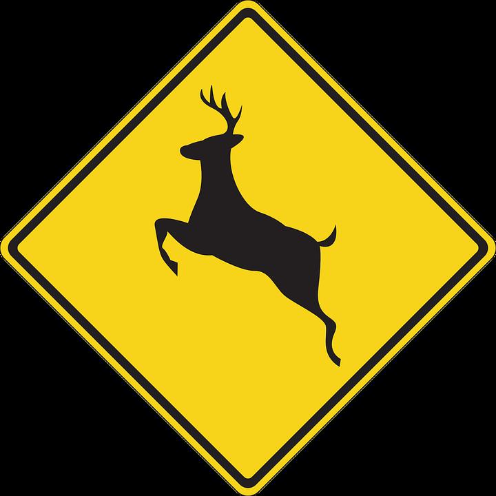 Signs Stolen