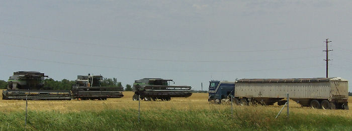 Caution Urged During Harvest