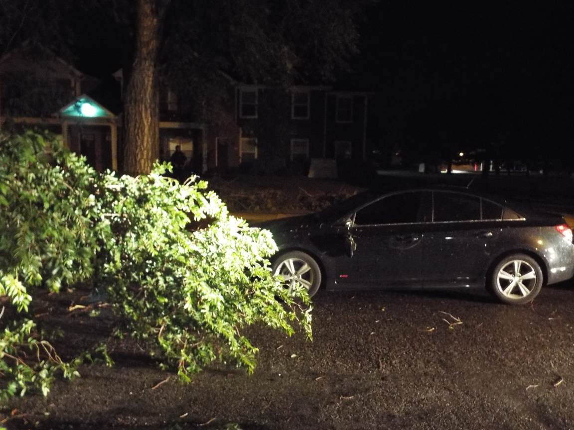 This limb fell on a car parked in front of the Hawthorne Apartment in the 700 block of N. 9th Street