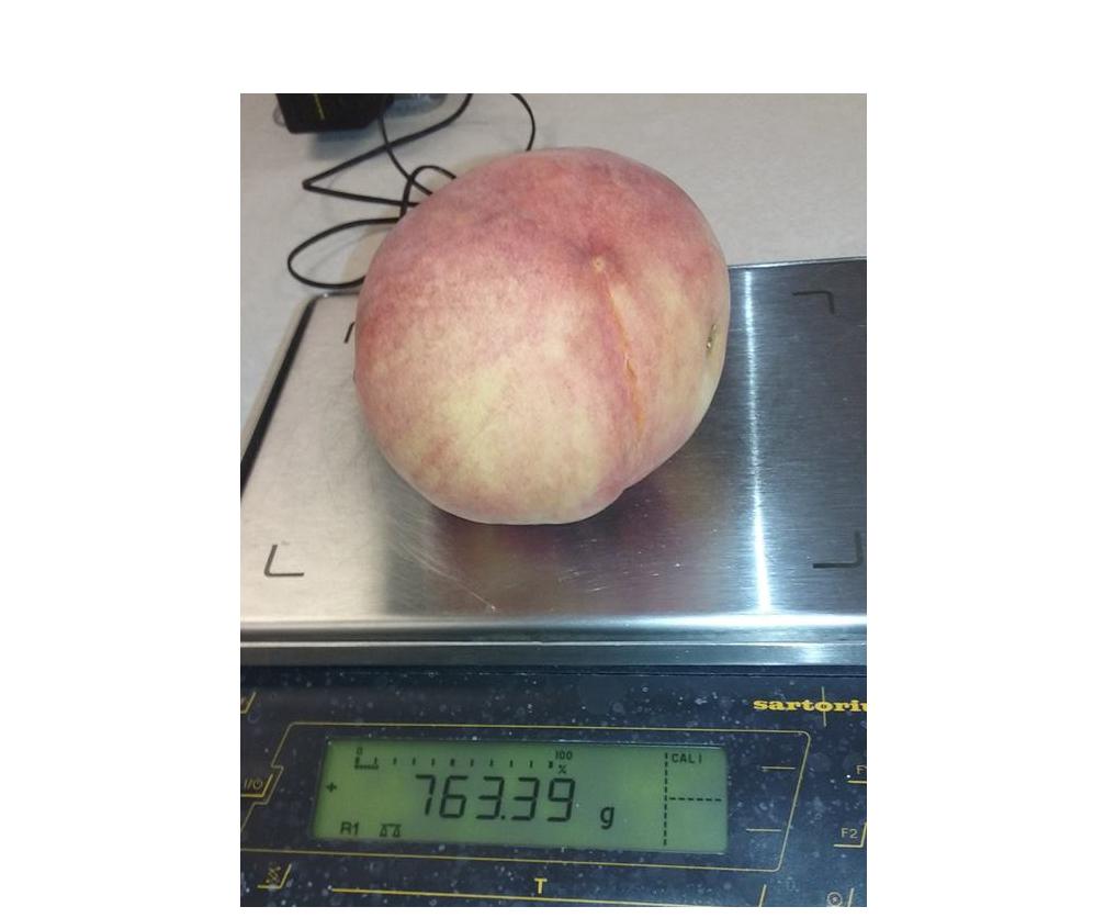 It's Just Peachy