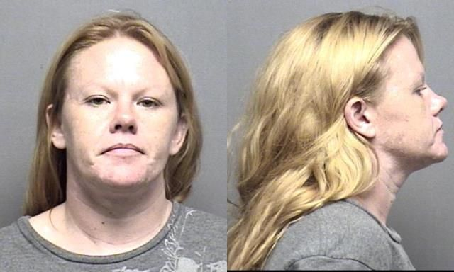 Angela Lynn Rogers - Felony Theft X4 / Burglary / Theft by Deception