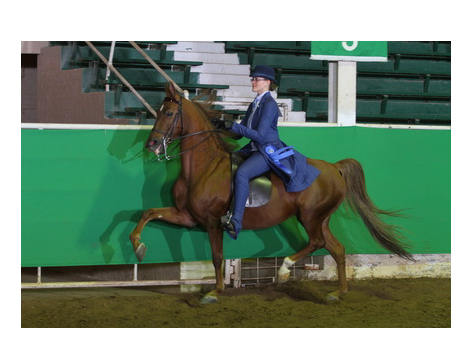 75th Year of Salina Charity Horse Show