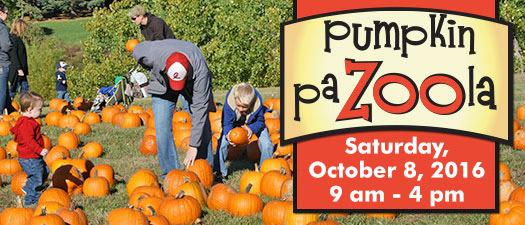 Pumpkin PaZoola at Zoo