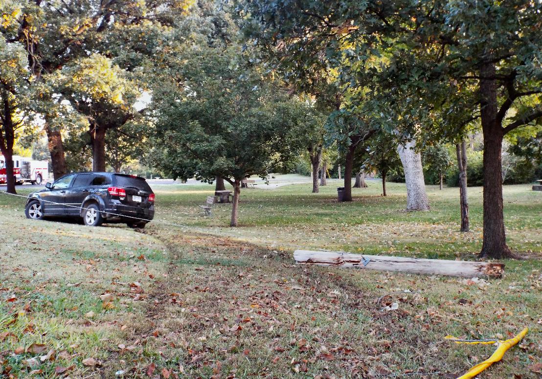 Driver Flees After Crashing in Park