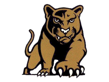 Andover Central Runs Away with Sweep Over South