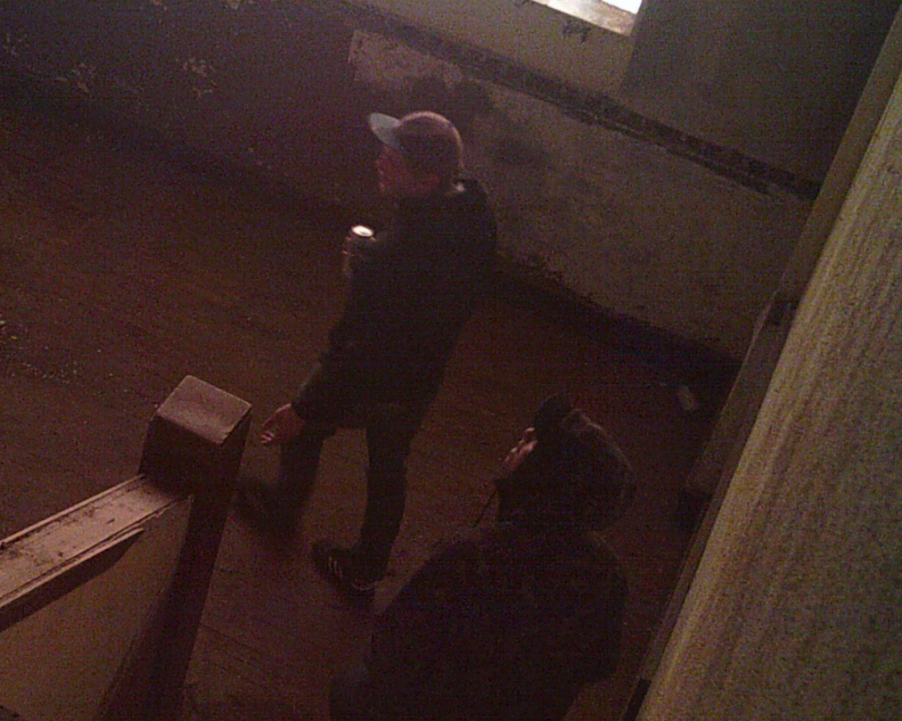 Vandals Caught on Camera