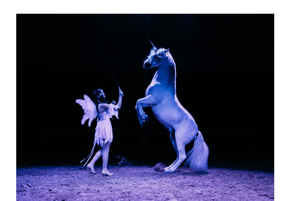 """""""Gala of the Royal Horses: Carousel of Dreams"""" Galloping to Salina"""
